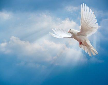 ENSINAMENTOS BÁSICOS DO CRISTIANISMO, O ESPÍRITO SANTO E SUA OBRA (Discipulado Lição 15)